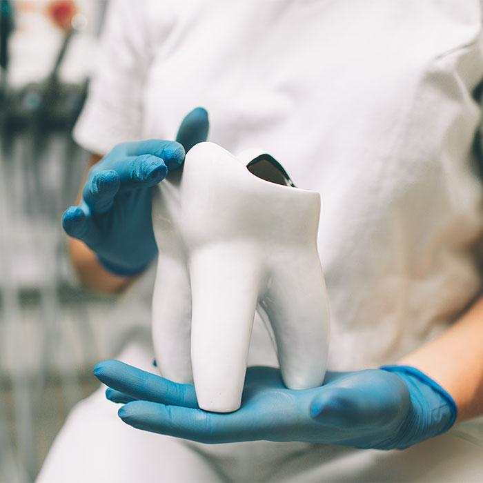 Endodontologie